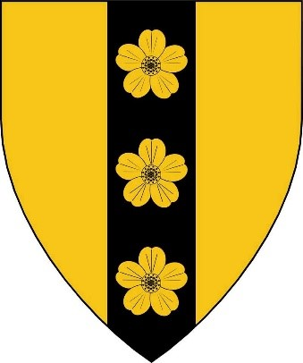 Arms 158